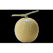 i-Melon