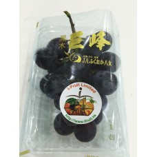 Japan Grapes from Kong Hill
