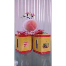 中秋燈籠禮盒