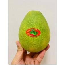 Taiwan Pomelos