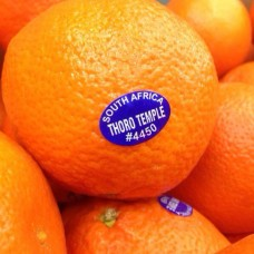 South Africa seedless mandarin