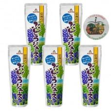 Japan Gold Pak Shinshu Grape Juice Pouch 90g