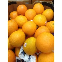 Egypt Orange