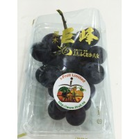Japan Grapes from Kong Hill