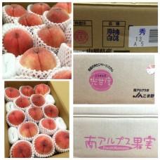 Yamanashi Peach(10-15's Random)
