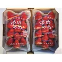日本長崎縣夢之香(270g)-(每箱)