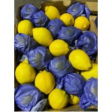 i-Lemon South Africa