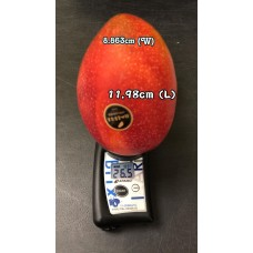 i-Taiwan Mango 5 kg box