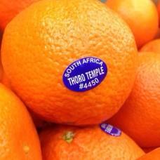 South Africa seedless mandarin